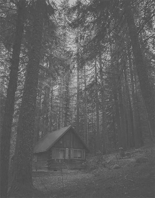 cabaña-bosque